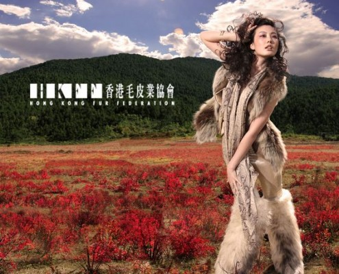 d0eaf8f2192503ede2bbd3151b45a7f7--hong-kong-fur-fashion